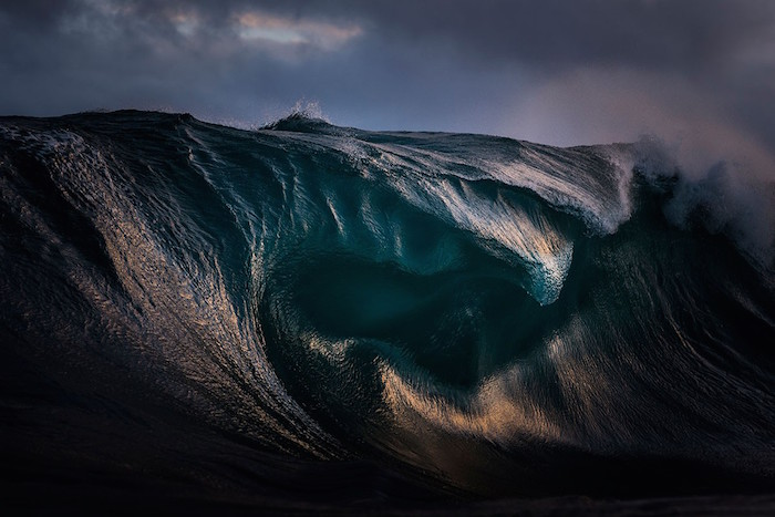 FOTO  Categoría- Mundo natural : Autor- Ray Collins : Lugar- Australia smithsonian.com Conoce a los 60 finalistas