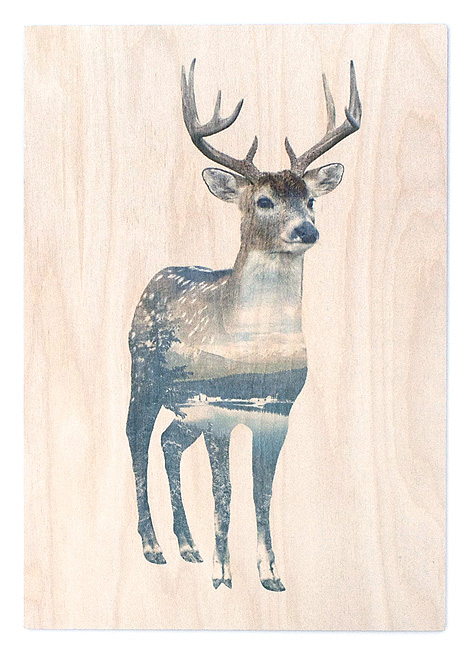 faunascapes-plywood-deer
