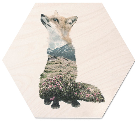 faunascapes-plywood-fox