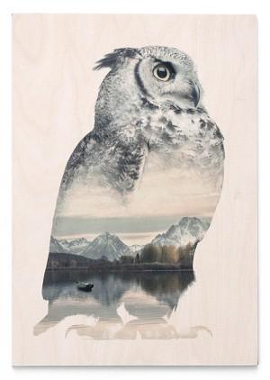 Ilustraciones que conjuntan animales y paisajes | paredro.com