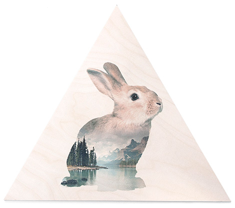 faunascapes-plywood-rabbit