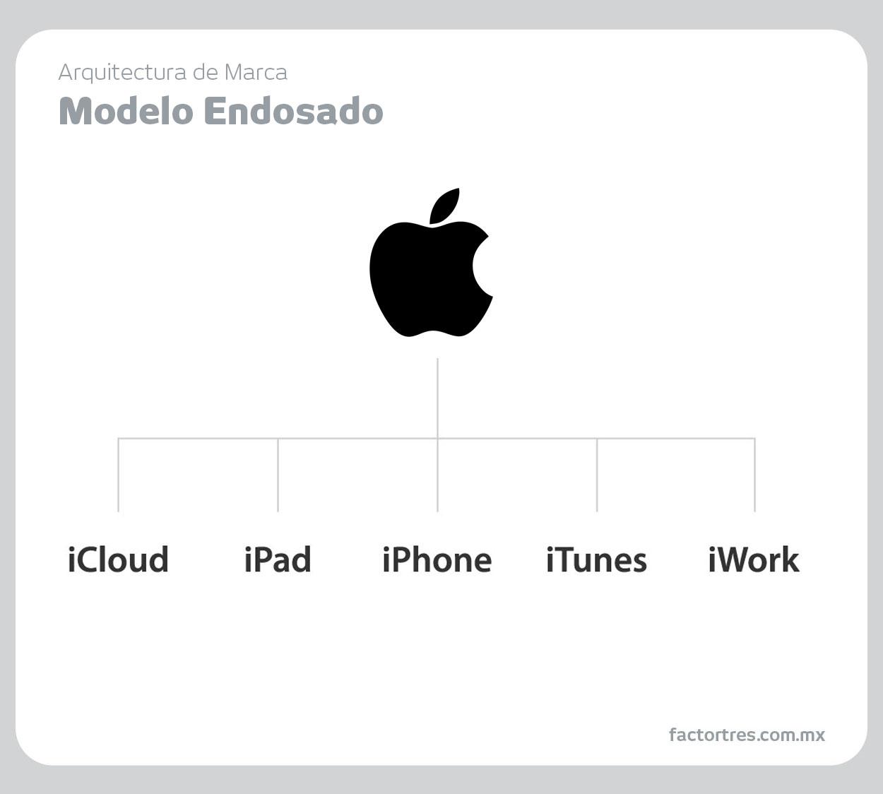 02-Modelo-endosado_