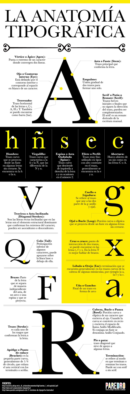 Infografía: La anatomía tipográfica