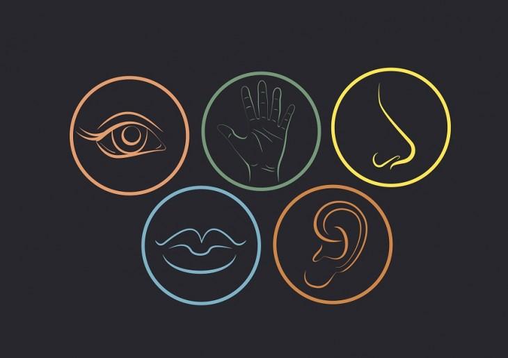 Infograf a el dise o involucra a los 5 sentidos y no solo for Mural de los 5 sentidos
