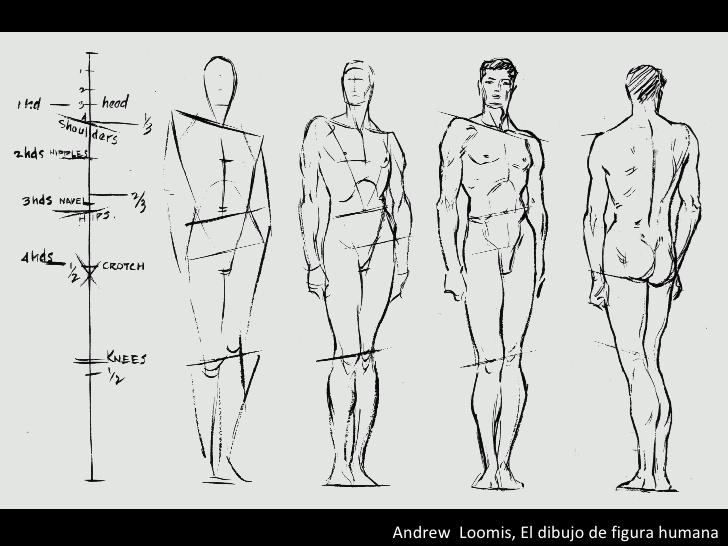 Creative Character Design Bryan Tillman Pdf : Libros que te ayudarán a dibujar mejor paredro