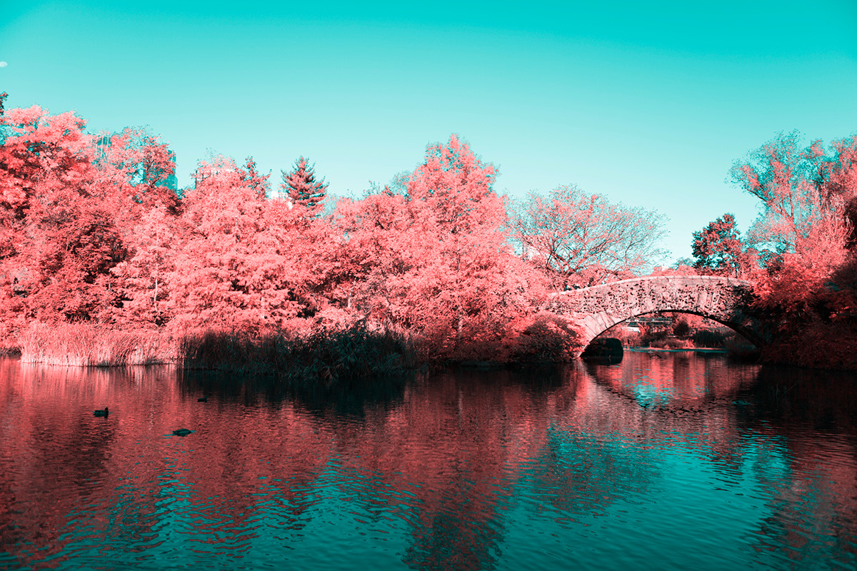 INFRARED NYC 01