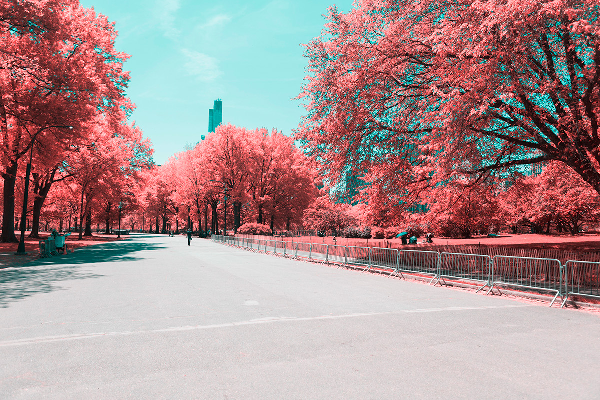 INFRARED NYC 03
