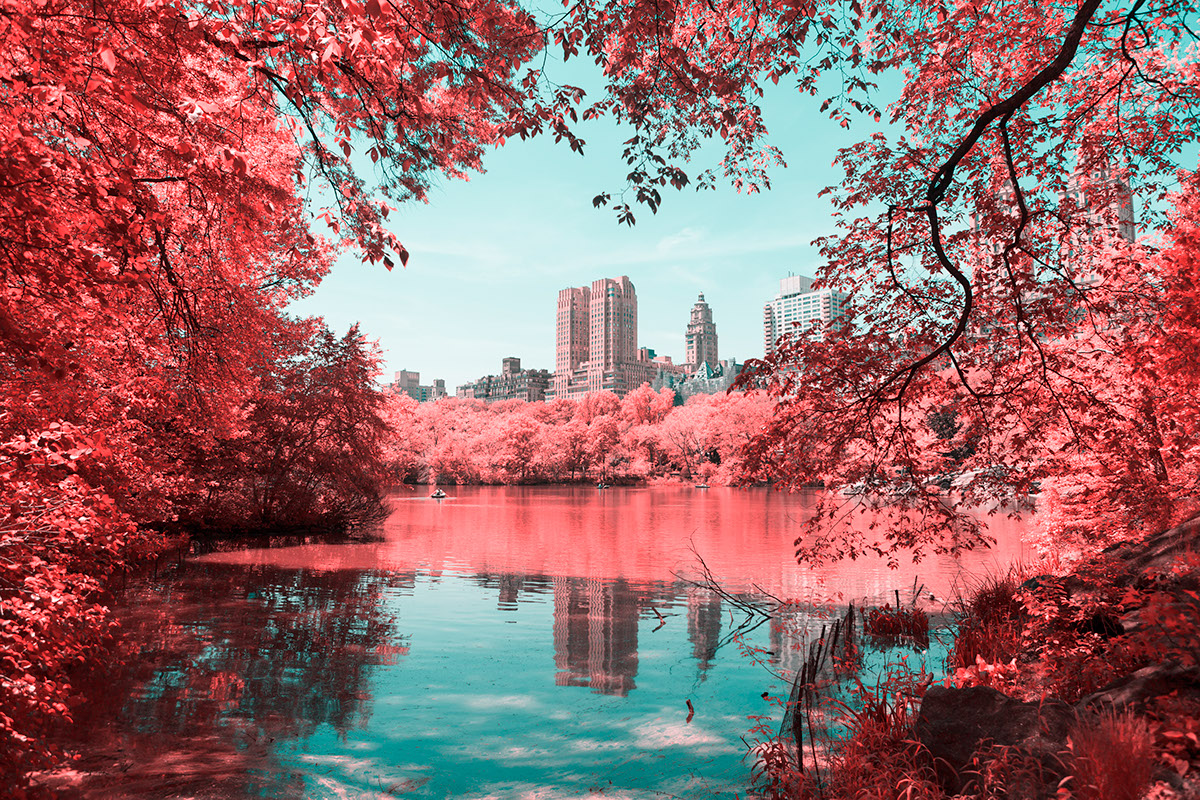 INFRARED NYC 05