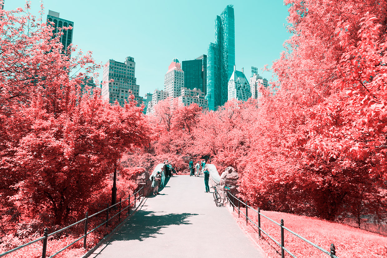 INFRARED NYC 08