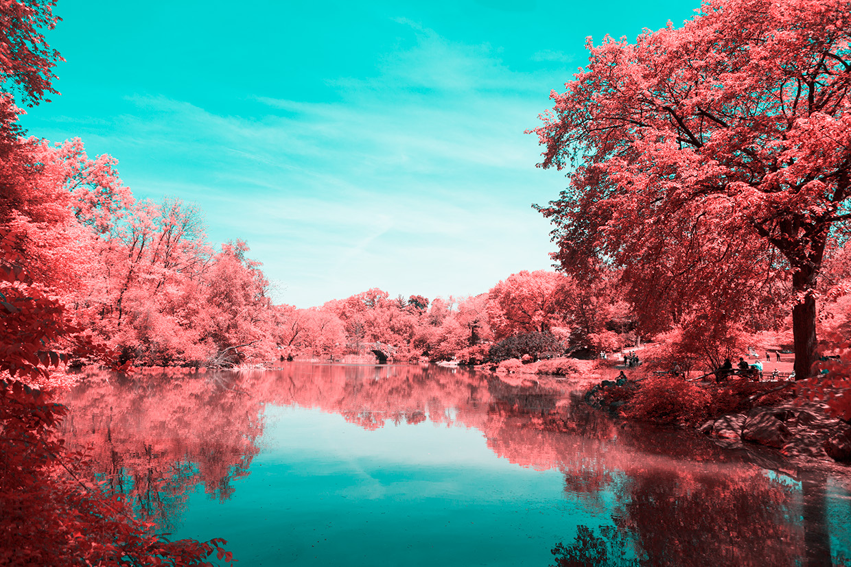 INFRARED NYC 09