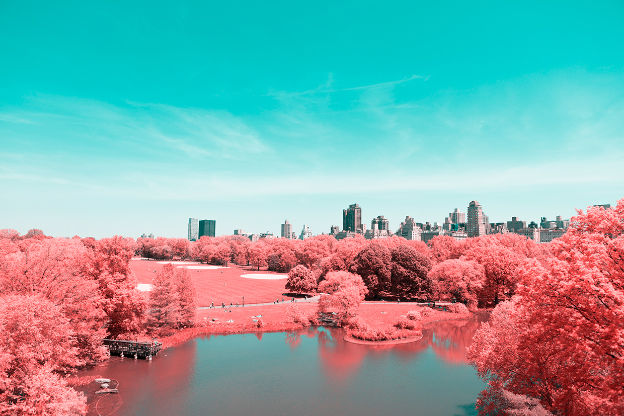 INFRARED NYC 11