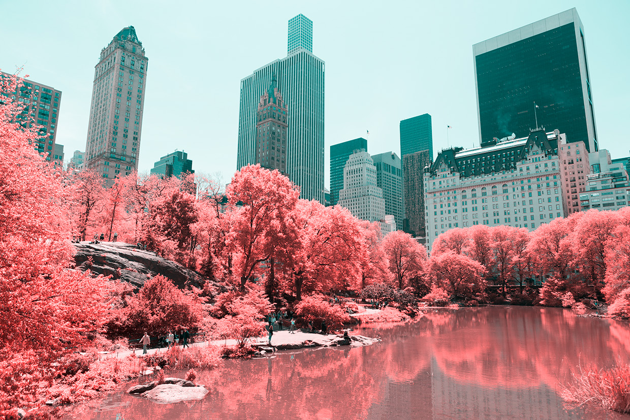 INFRARED NYC 12