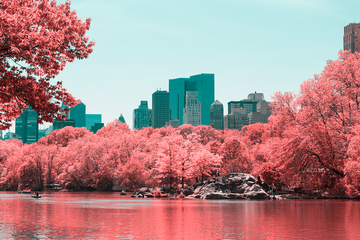 INFRARED NYC 13