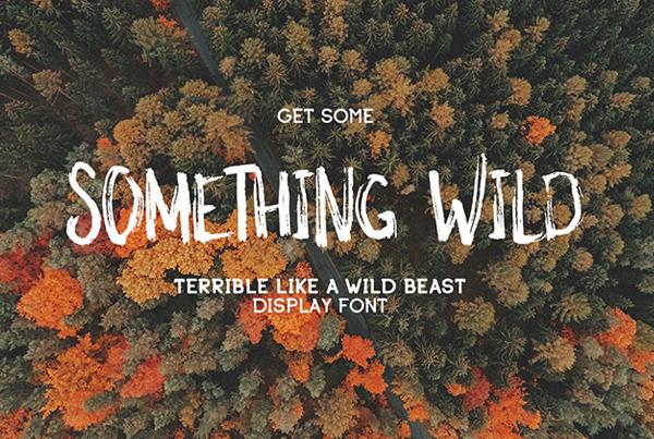 Something_Wild_Free_Font