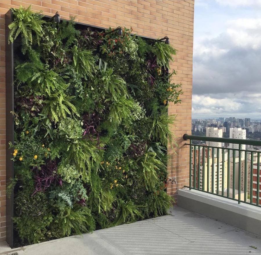 Muros y azoteas verdes sus beneficios para la for Muros verdes beneficios