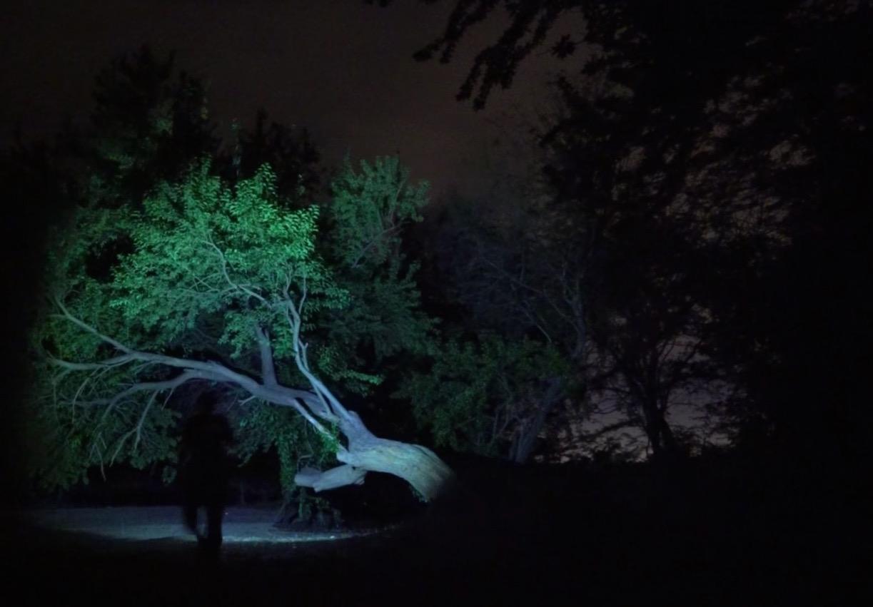 Tutoriales en fotografía nocturna que son infalibles