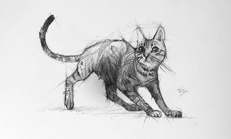 Sorprendentes Ejemplos De Dibujo A Lápiz Paredrocom