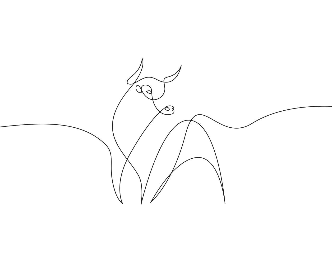 linea-continua-02