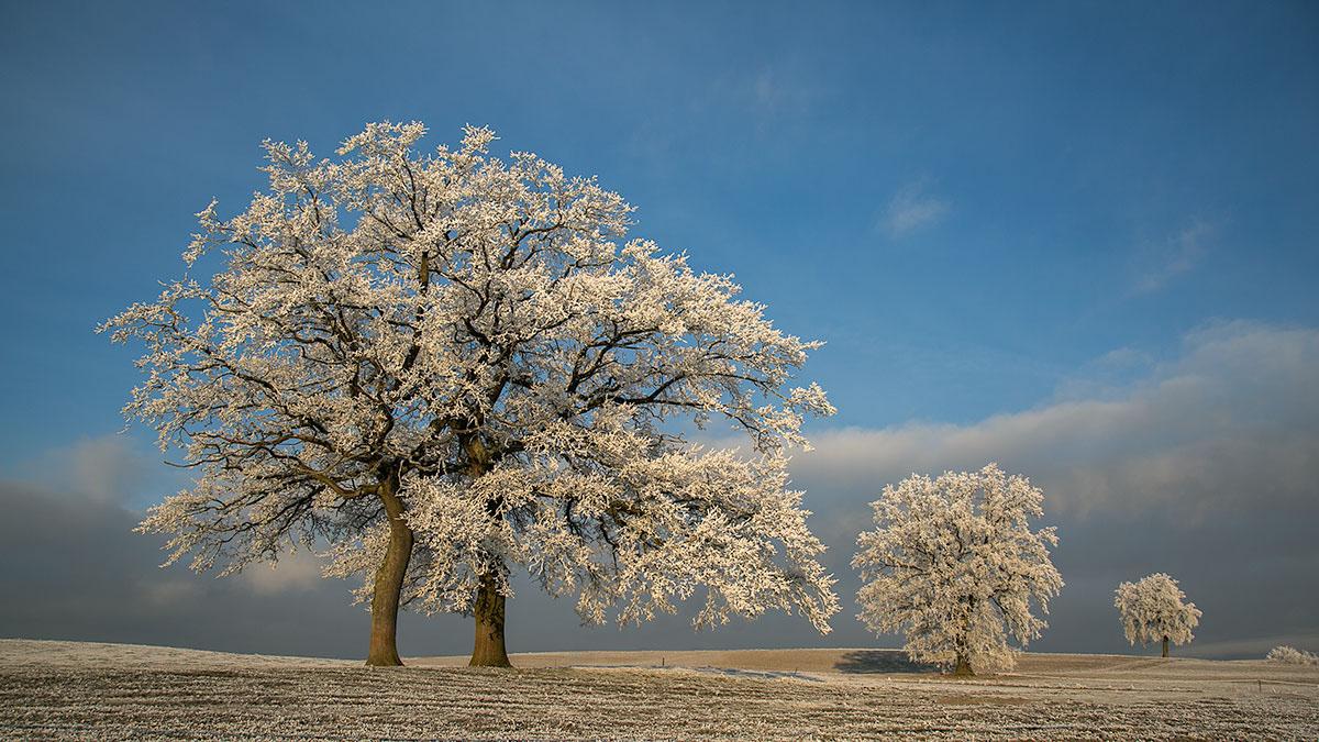 invierno-02