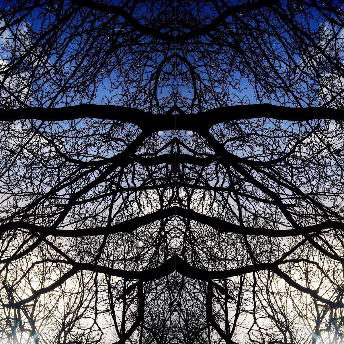 simetria-05