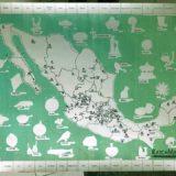 ¿Te imaginas ver los 2446 municipios de México en un sólo mapa? Rasca Mapas lo hizo realidad. Existen tres diseños distintos que te encantarán.