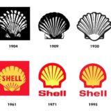 La concha es el emblema de la compañía Shell desde 1900, la cual fue elegida como nombre y símbolo debido a su popularidad.
