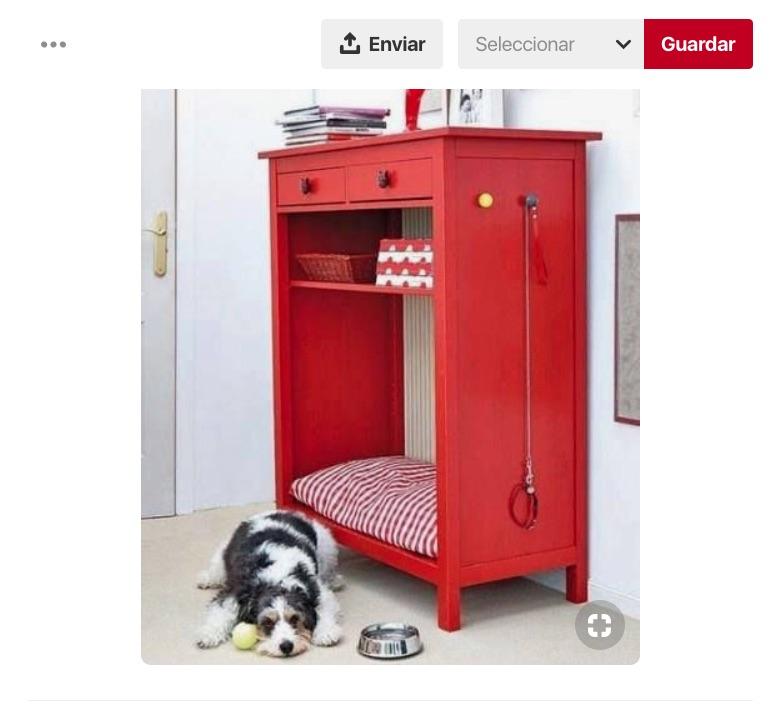 Si deseas tener una casa para perro más creativa de lo normal, te damos 4 espacios que debes considerar en el diseño de interiores perruno.
