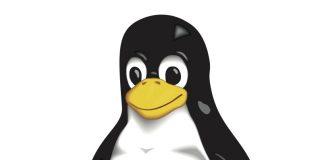Tux es el pinguïno que forma parte del logo de Linux, éste animal es reconocido porque por su piel pareciera que está vestido de una manera especial.