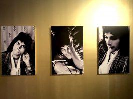 La vida de Freddie Mercury en fotografías es tan extravagante como impresionante, su lucha por destacar su increíble voz siempre fue su objetivo de vida.