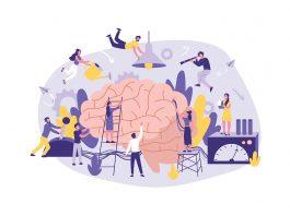 Existen tres tipos de neuromarketing que nos ayudan a entender las reacciones de la personas hacia las estrategias de publicidad.