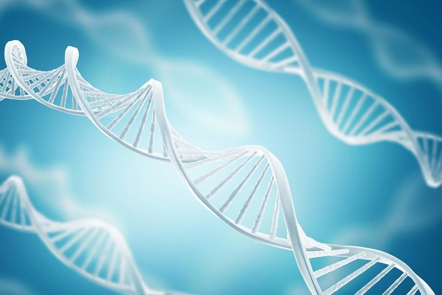 Base-Datos-ADN-Red-Genetica-Nacional-GENMEX