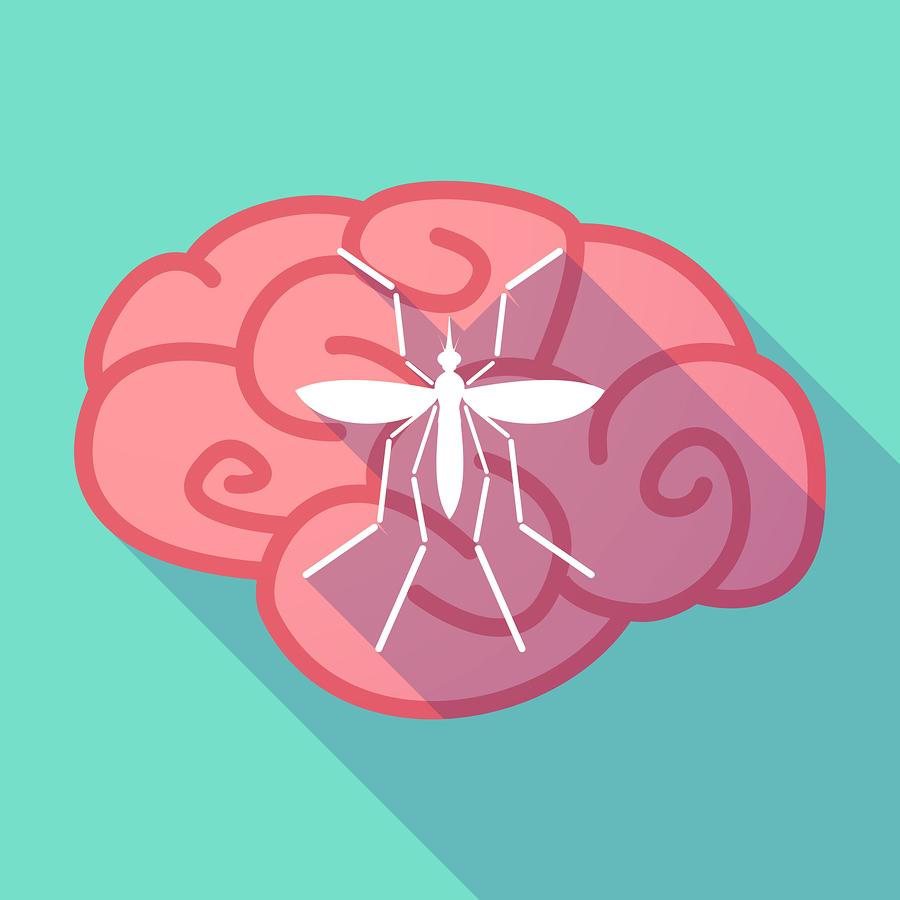 Virus-Zika-Meningoencefalitis