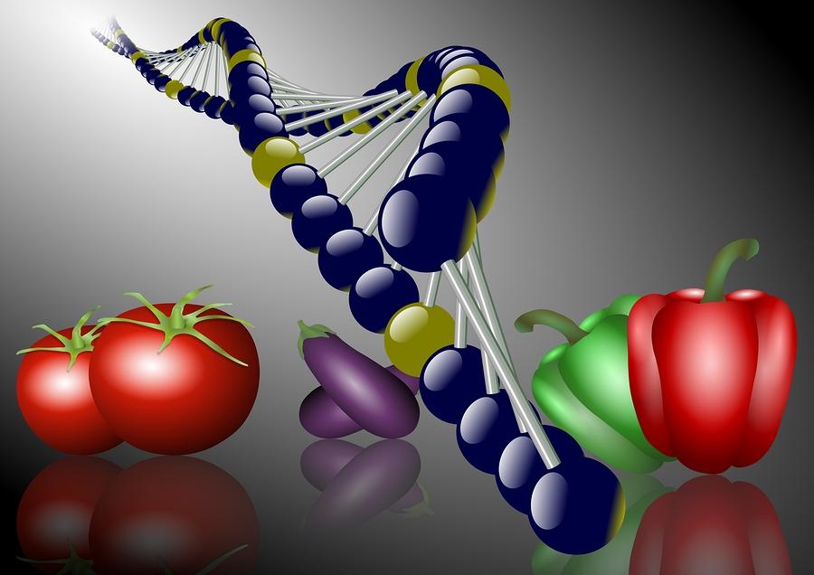 Dieta-Vegetarian-Genoma-Humano