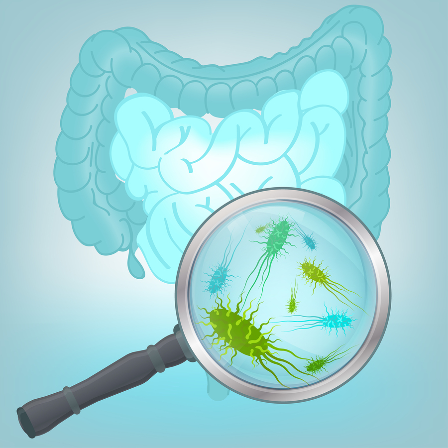 Microbiota-Intestinal-Sistema-Inmunologico-VIH