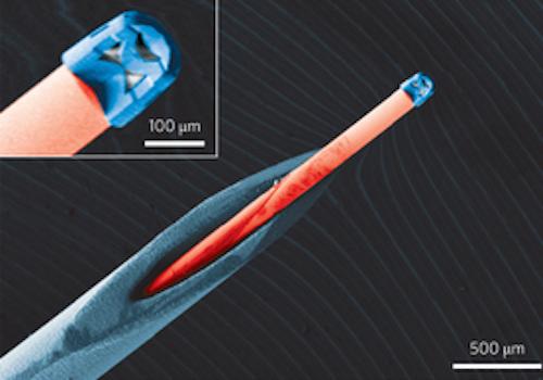 Nanocamara-Inyectable-Endoscopio-Endoscopia