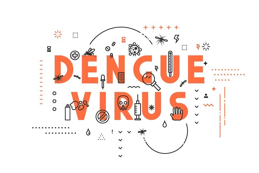 Virus-Dengue-Sintomas-Tratamiento