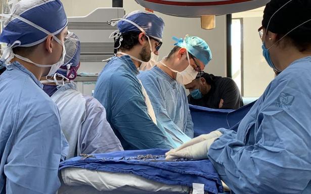 IMSS doctors transplanted 4 kidneys in a week