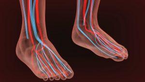 5 consejos para combatir los problemas vasculares periféricos