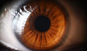 Los ojos expresan como se encuentra tu estado de salud