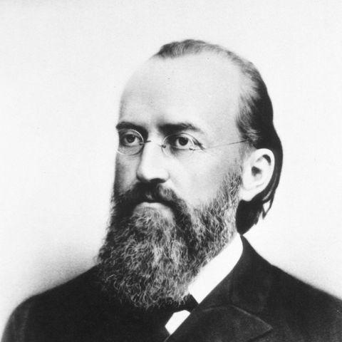 Ewald Hering