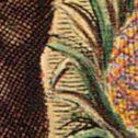 Georg Marcgrave