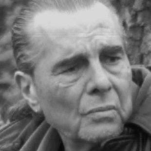 Richard Appignanesi