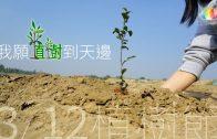 愛心樹遍人間