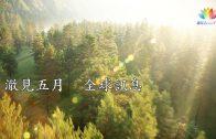 2019・11月(上)・澈見全球訊息