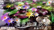 0730-濁世的蓮花池-繁-450px