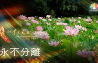 0911-憶師恩讚頌-永不分離-繁-450px