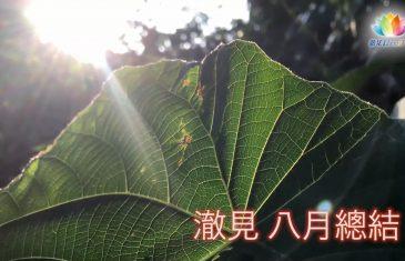 2017・8月・澈見全球訊息