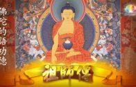 0627-祖師傳-11-佛陀的語功德-繁