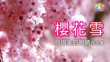 櫻花雪-夢蓮花讚頌合唱團《 深夜心音 _ 發現美的眼睛・作品集 》