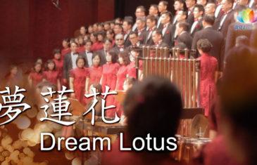 《 夢蓮花 Dream Lotus 》